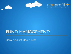 Fund Management Software for Non-Profits and Non Governmental Organizations