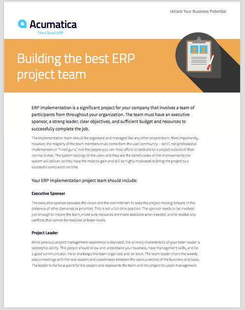 Building the Best ERP Project Team