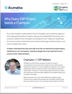 Why Every ERP Project Needs a Champion