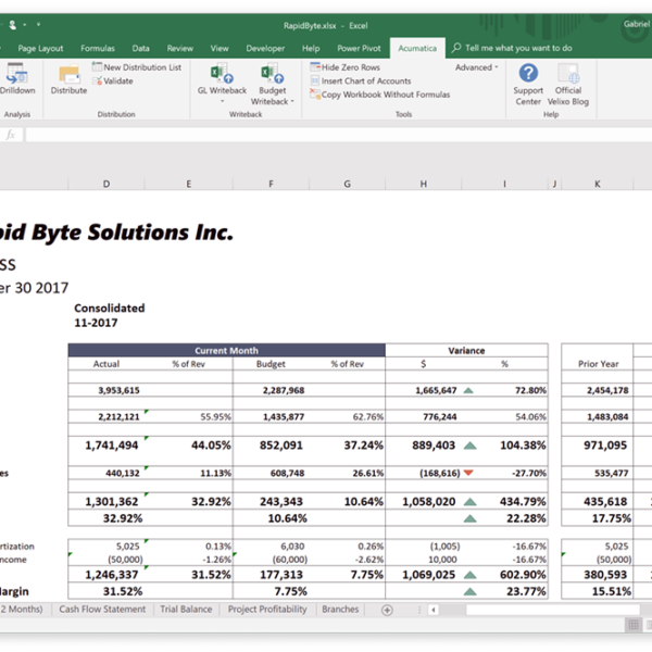 Excel-Based Reporting for Acumatica